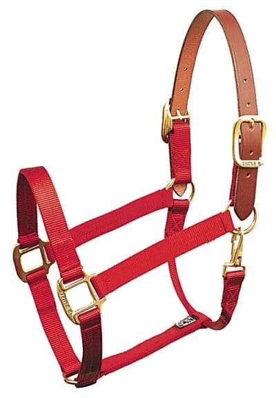 BREAKAWAY 1″ NYLON HALTER WITH SNAP, DURABLE BRONZE HARDWARE, halter, breakaway, nylon, Triple E Manufacturing