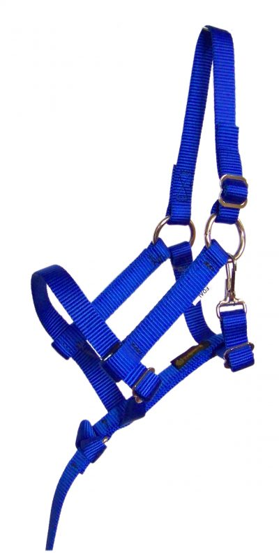 FOAL 3/4″ FULLY ADJUSTABLE NYLON HALTER W/REMOVABLE HANDHOLD & SNAP, foal, halter, adjustable, nylon, Triple E Manufacturing