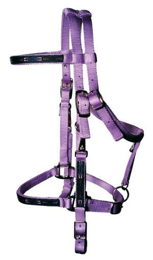 Trail Bridle with Overlay