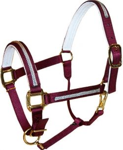 "Braided Trim Overlay 1"" Adjustable Felt-Lined Halter, Durable Bronze Hardware"