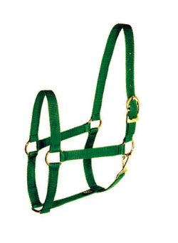 "Poly-Web 1"" Triple-Ply Halter w/Snap & Brass-Plated Hardware"