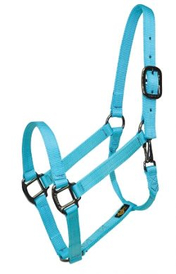 "Premium 1"" Nylon Halter with Snap, Durable Steel Gray Hardware"