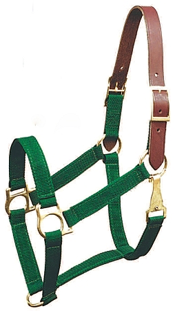 "Breakaway 1"" Triple-Ply Poly Web Halter w/Snap, Brass-Plated Hardware"