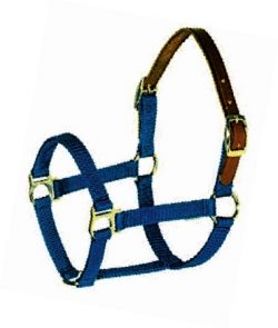 "Breakaway 3/4"" Triple-Ply Poly Web Halter w/Snap, Brass-Plated Hardware"