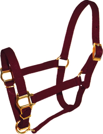 "Mini 5/8"" Premium  Nylon Adjustable Halter, No Snap"