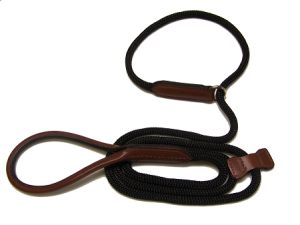 Dog Collar/Leash Combo