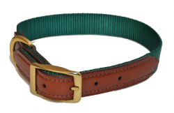 DOG COLLAR, 1″ PREMIUM NYLON WITH LEATHER ENDS, dog, collar, leather, Triple E Manufacturing