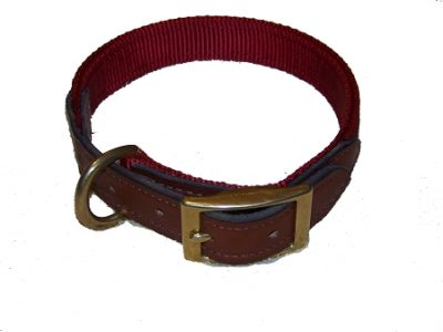 "Dog Collar, 3/4"" Premium Nylon with Leather Ends"