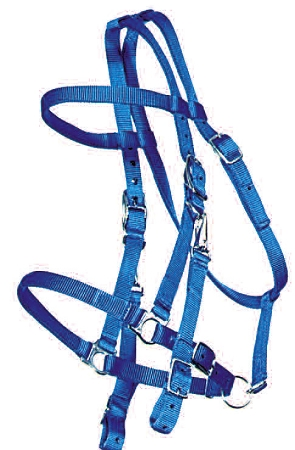 Trail Bridle with Nickel Hardware