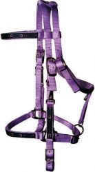 Trail Bridle with Southwest Overlay, Nickel Hardware