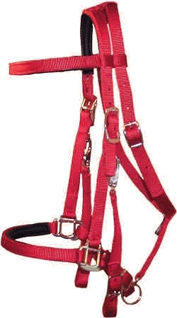 Padded Trail Bridle with Nickel Hardware