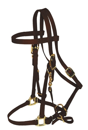 Dura-Tough Beta Trail Bridle