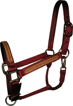 "1"" Leather Overlay Adjustable Nylon Halter with Snap, Steel Gray Hardware, horse halter with snap, Triple E Manufacturing"