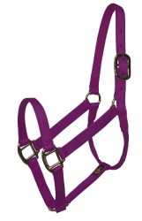 "Premium 1"" Nylon Halter, No Snap, Durable Bronze Hardware"