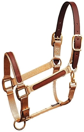 "1"" Leather Overlay Adjustable Nylon Halter with Leather Crown, Bronze Hardware"