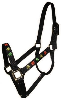 "Embroidered 1"" Nylon Halter, No Snap, Durable Bronze Hardware"