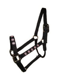 "Embroidered 1"" Nylon Halter, No Snap, Durable Steel Gray Hardware"