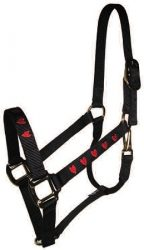 "Embroidered 1"" Nylon Halter with Snap, Durable Bronze Hardware"
