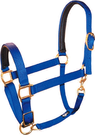 "PVC Padded 1"" Adjustable Nylon Halter, Bronze Hardware"
