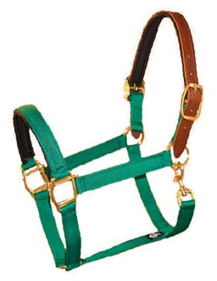 "PVC Padded 1"" Nylon Halter with Padded Leather Crown & Snap, Bronze Hardware"