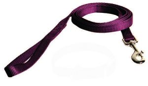 "4' Nylon 3/4"" Web small dog leash"