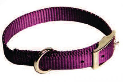 "Dog Collar, Premium 3/4"" Nylon"