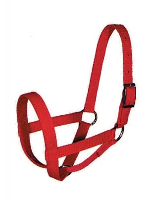 Cow Halter, Triple-Ply Poly Web