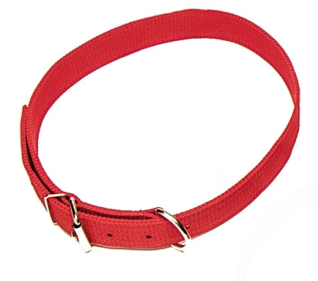 "Cow Collar, 1 1/2"" Triple-Ply Poly Web"