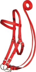 Draft Bridle w/ Conway Buckles, Bit & Reins