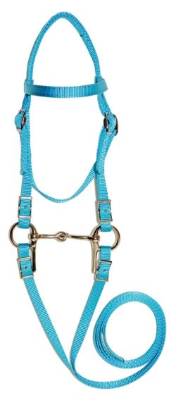 "Mini Bridle w/ 3-1/2"" Bit & 4' Reins"