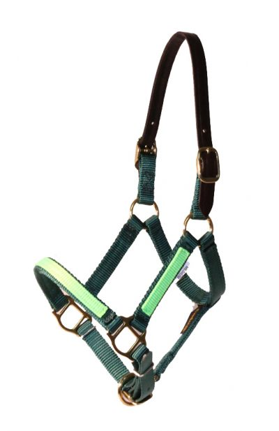 BREAKAWAY MINI 5/8″ PREMIUM NYLON ADJUSTABLE HALTER W/OVERLAY, NO SNAP, breakaway, halter, overlay, nylon, Triple E Manufacturing