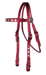 Brow Band Headstall with Embroidery, Decorative Rosettes and Buckles