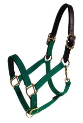 "Breakaway PVC Padded 1"" Double-Ply Poly Web Adjustable Halter, Brass-Plated Hardware"