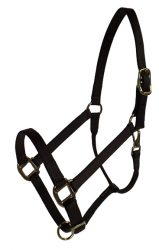 "Draft Halter, 1"" Premium Nylon Adjustable Halter, Durable Bronze Hardware"