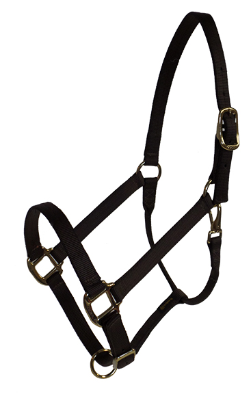 DRAFT HALTER, 1″ PREMIUM NYLON ADJUSTABLE HALTER, DURABLE BRONZE HARDWARE, draft, nylon, adjustable, halter, Triple E Manufacturing
