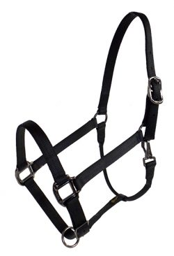 DRAFT HALTER, 1″ PREMIUM NYLON HALTER W/SNAP, DURABLE STEEL GRAY HARDWARE, draft, nylon, halter, Triple E Manufacturing
