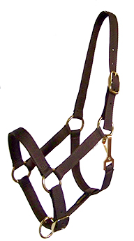 POLY-WEB 1″ DOUBLE-PLY ADJUSTABLE HALTER W/BRASS-PLATED HARDWARE, poly, web, adjustable, halter, Triple E Manufacturing