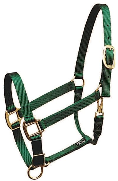 PREMIUM 1″ NYLON HALTER, FULLY ADJUSTABLE, DURABLE BRONZE HARDWARE, nylon, halter, adjustable, Triple E Manufacturing