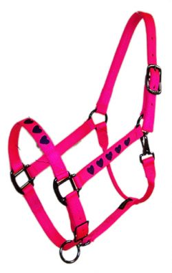 EMBROIDERED 1″ ADJUSTABLE NYLON HALTER DURABLE W/ STEEL GRAY HARDWARE, embroidered, nylon, adjustable, halter, Triple E Manufacturing