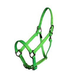 Parker Adjustable Halter with snap, squares, nylon, halter, Triple E Manufacturing