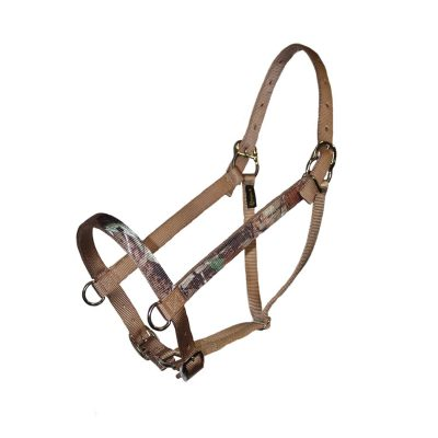 Parker, Realtree, Adjustable, halter, d-rings, Triple E Manufacturing