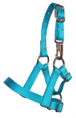 Adjustable alpaca halter, nylon, halter, Triple E Manufacturing